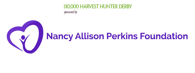 Nancy Allison Perkins Foundation